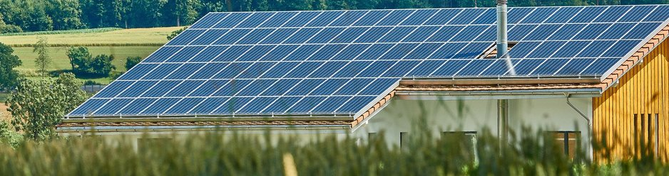 Photovoltaic plant in a field